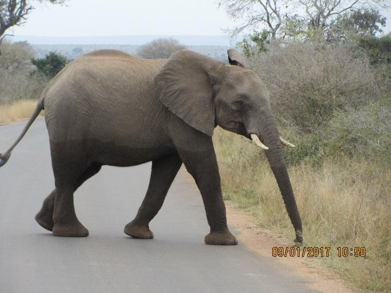 South Africa Impact Tour Travel With Heart Travel Tours Collette - Exploring south africa 10 best day trips